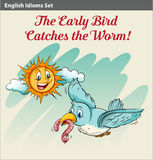 An early bird catching a worm. Idiom Royalty Free Stock Image