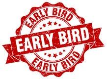 Early bird seal Stock Photography