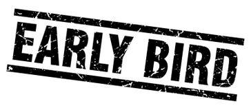 Free Early Bird Stamp Stock Photo - 122423660