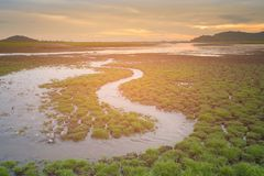 Early brith ground with small water way with sunset skyline background. Natural landscape background Stock Images