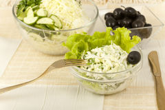 Early cabbage salad with cucumbers and olives stock photography