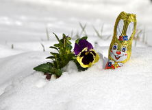 Early easter may be still in snow Royalty Free Stock Image