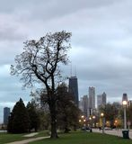 Early Evening Lincoln Park. This is an early evening Fall picture of Lincoln Park featuring the Hancock Center, the Chicago Skyline, and a large tree that has stock image