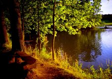 Early evening at the pond. South Bohemia stock photo