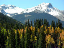 Early Fall. Changing colors in the Rocky Mountains during early Fall Royalty Free Stock Photo