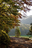 Early Fall in the Alps Royalty Free Stock Photography
