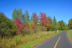 Early fall cycle path Stock Photo