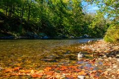 Early fall on the Farmington River. Early fall landscape featuring the Farmington River flowing through the woods on a sunny day Stock Image