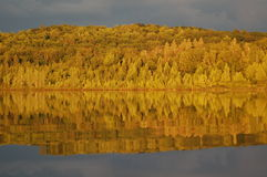 Early fall leaves reflecting on lake after thunderstorm Stock Photos