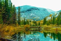 Early fall at mount Loretta ponds. Kananaskis Country, Alberta, Canada Stock Photography