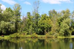 Early fall on the pond Stock Image