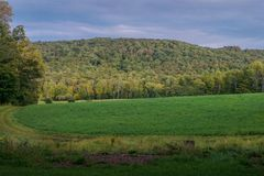 Early Fall In Vermont royalty free stock images