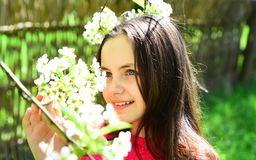 Early flowering. Young lady with spring blossom. Beauty model with fresh look. Pretty girl with young face skin and no. Makeup. Cute girl on spring nature royalty free stock photo