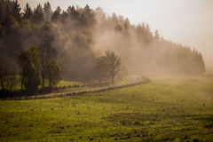 Early fogy autumn morning on the Czech Austrian border Royalty Free Stock Photos