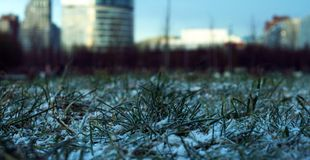 Early frosts in city Royalty Free Stock Image