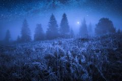 Free Early Frozen Morning With Hoarfrost On A Grass Royalty Free Stock Photo - 134017495
