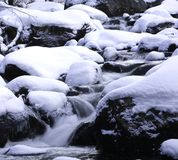 Early Ice. Mountain stream above 9,000 feet already feeling the onset of winter in October Stock Images