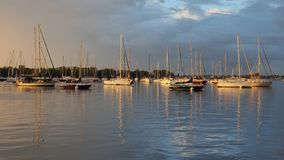 Early light on the anchorage at Dinner Key Marina in Coconut Grove, Miami, Florida. Early light after a rainstorm on the anchorage at Dinner Key Marina in royalty free stock photography
