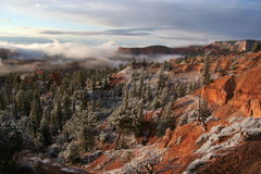 Early Light in Bryce Canyon. Light snow and morning fog in Bryce Canyon National Park, Utah, USA Royalty Free Stock Image
