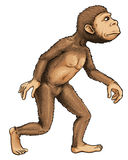 Early man Royalty Free Stock Photography