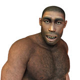 Early man, Homo erectus. 3D rendering of early man, Homo erectus Stock Images
