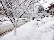 Early March Snowstorm in the City royalty free stock photo