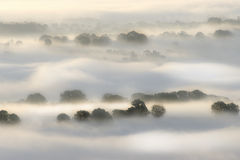 Early Mist. Early morning shot of mist over woodland. Taken just before sunrise, in Autumn (Fall Royalty Free Stock Photos