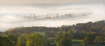 Early Mist. Early morning shot of mist over woodland. Taken just before sunrise, in Autumn (Fall Royalty Free Stock Photography