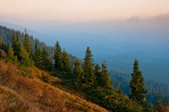 Early misty morning in Carpathian Mountains Royalty Free Stock Images