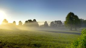 Early misty morning landscape in PolandMisty landscape with trees and meadow in Poland. Misty landscape with trees and meadow under blue sky on Podlasie in stock footage