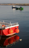 Early Morning, Amble Harbour, Red boat. Peaceful learly morning scene, Amble Harbour, Red fishing boat with abstract reflection Stock Images