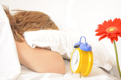 Early morning awakening Stock Photography