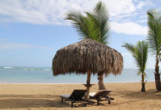 Early Morning at the Beach. Sun loungers, umbrellas and palm trees in early morning next to ocean Stock Photo