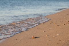 Early morning on the beach. Small waves royalty free stock image