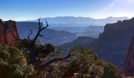 Early Morning Canyonland Vista stock photo