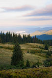 Early morning in the Carpathians. Stock Photo
