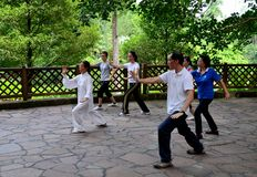 Early morning Chinese Tai Chi exercise in park Royalty Free Stock Images
