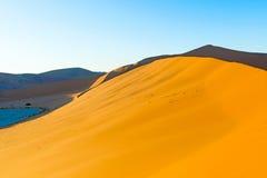 Early morning climbers on sand dune near Sossusvlei, Namibia Stock Image