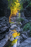 The Early Morning Color Of Watkins Glen State Park Royalty Free Stock Images