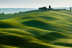 Early morning on countryside near Pienza, Tuscany, Royalty Free Stock Image
