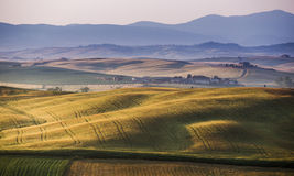 Early morning on countryside, San Quirico d´Orcia, Tuscany, Ita Royalty Free Stock Image