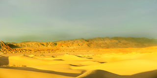 Early morning desert Stock Photos