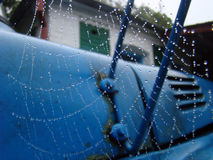 Early morning. Dew on web. Cobweb on the mirror of old truck Stock Photography