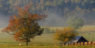 Early morning fall farm stock photo