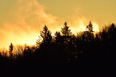 Early Morning Fall Mist Stock Photography