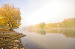 Early Morning Fall Mist Stock Photos
