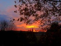 Early morning Fall Sky Royalty Free Stock Photo