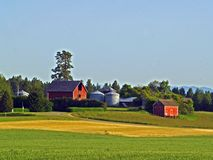 Early Morning at the Farm. This image of the cultivated fields and the farm buildings was taken in NW Montana Royalty Free Stock Image