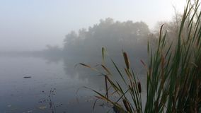 Early morning fishing. Mist on the lake early morning Royalty Free Stock Photos