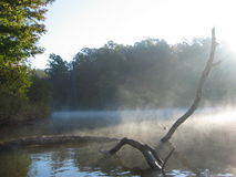Early morning fog. Fog on NC pond Royalty Free Stock Photo